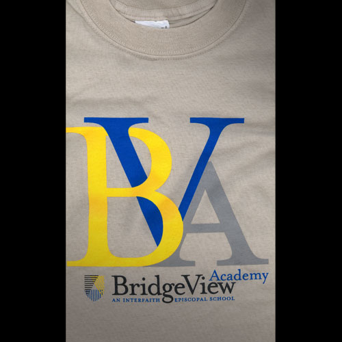 BridgeView Academy Collateral
